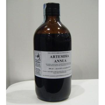 ARTEMISIA ANNUA 500ML GTT